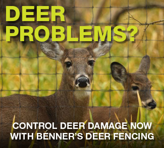 Control deer with deer fence